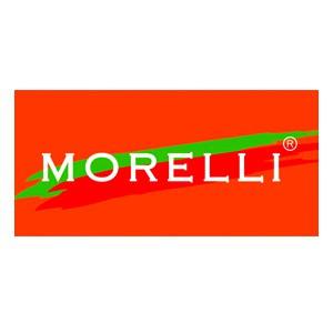 Петли Morelli