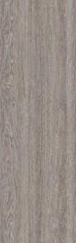 Tweed, кортекс [153]